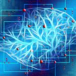 Kann Lernen das Gehirn belohnen?